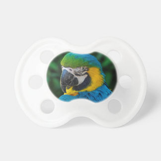 Blue and Yellow Bird Pacifier