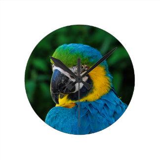 Blue and Yellow Bird Round Clock