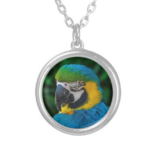 Blue and Yellow Bird Silver Plated Necklace