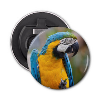 Blue and Yellow Macaw Bottle Opener