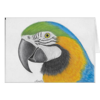 blue and yellow macaw greetings card
