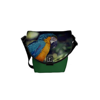 Blue and yellow macaw messenger bag