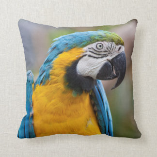 Blue and Yellow Macaw Pillow