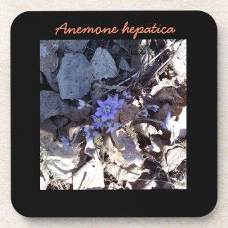 Blue Anemone Flower Coaster