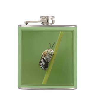 Blue Banded Bee Hip Flask