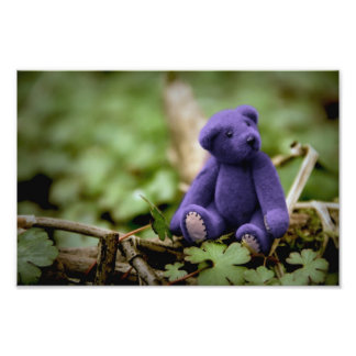 Blue Bear Photo Print