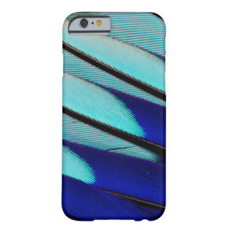 Blue-bellied Roller feathers Barely There iPhone 6 Case