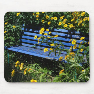 blue bench mouse pad
