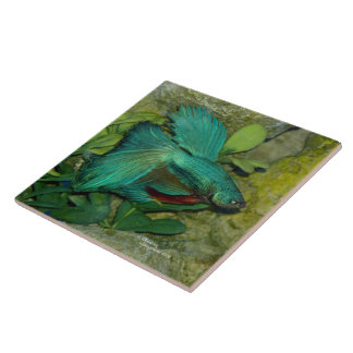 Blue Betta fish Tile