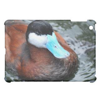 Blue Billed Duck iPad Case