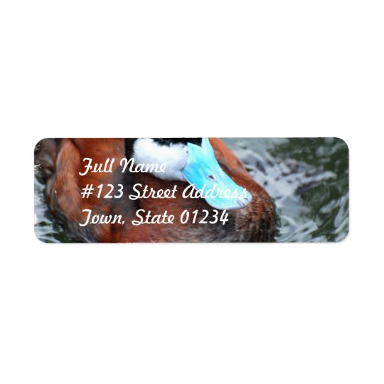 Blue Billed Duck Mailing Label Return Address Label