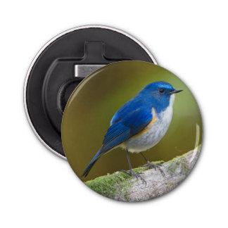 Blue Bird and Himalayan Bluetail Button Bottle Opener