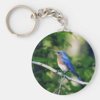 Blue bird basic round button keychain