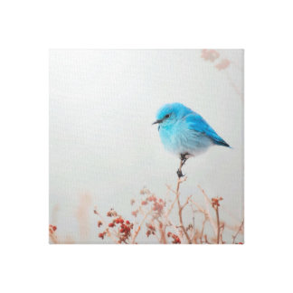 Blue Bird Canvas
