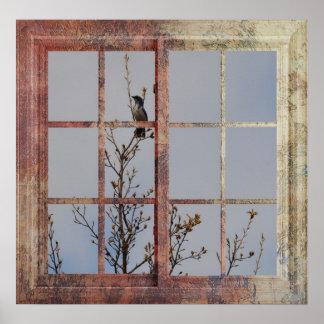 Blue Bird in Window Poster