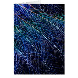 Blue Bird Of Paradise Feather Abstract Card