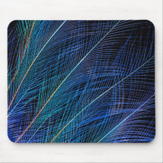 Blue Bird Of Paradise Feather Abstract Mouse Pad