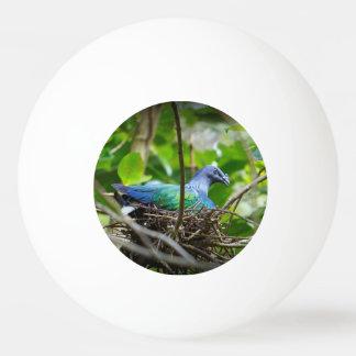 Blue Bird Ping-Pong Ball