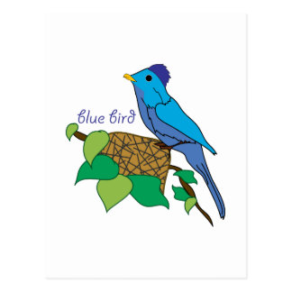 Blue Bird Postcard
