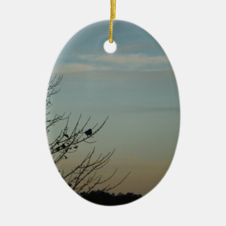 Blue Bird silhouette Powder Blue Sky Ceramic Oval Ornament