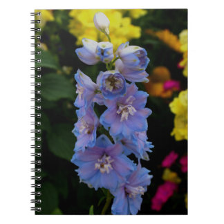 Blue Blooms Photograph Notebooks