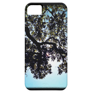 Blue Branches iPhone 5 Cover