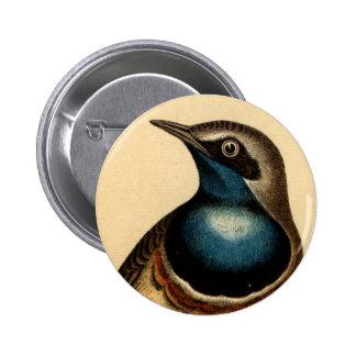 Blue Breasted Bird 2 Inch Round Button