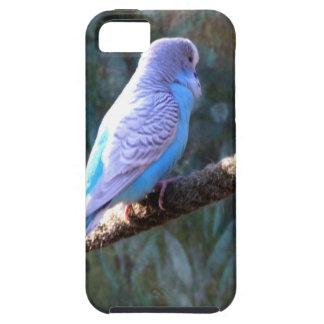 Blue Budgie iPhone 5 Case