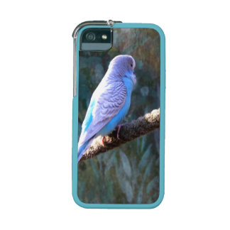 Blue Budgie Case For iPhone 5