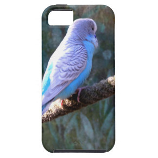 Blue Budgie iPhone 5 Case