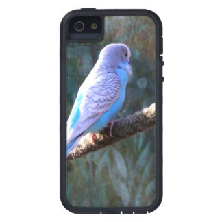 Blue Budgie iPhone 5 Covers
