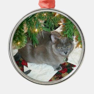 Blue Burmese Xmas Silver-Colored Round Ornament