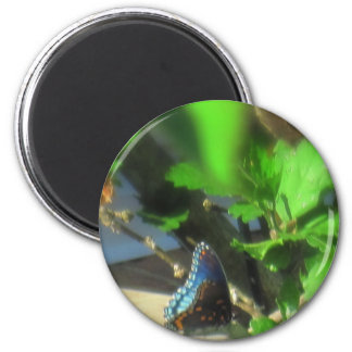 Blue Butterfly 2 Inch Round Magnet