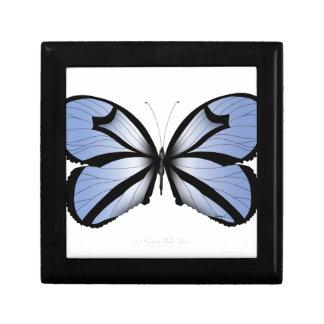 Blue Butterfly 5 Giant Blue Vane Gift Box