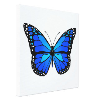 Blue butterfly gallery wrap canvas