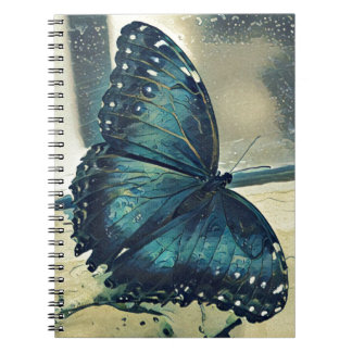 Blue Butterfly Note Books