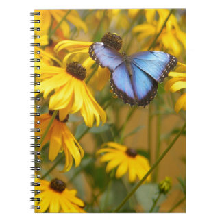 Blue Butterfly on Yellow Flowers Spiral Notebook