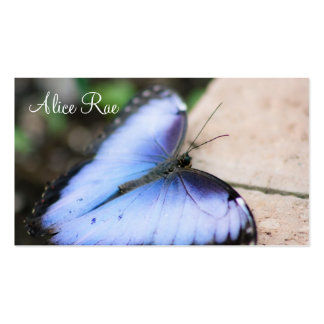 Blue Butterfly Pack Of Standard Business Cards