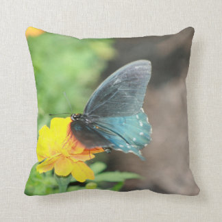 Blue Butterfly Yellow Coreopsis Throw Pillow
