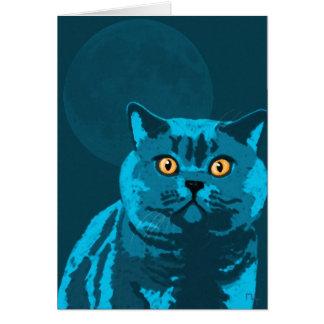 Blue cat card