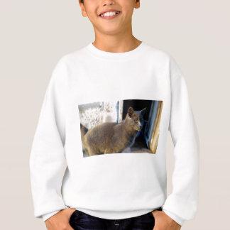 Blue Cat Focus Sweatshirt
