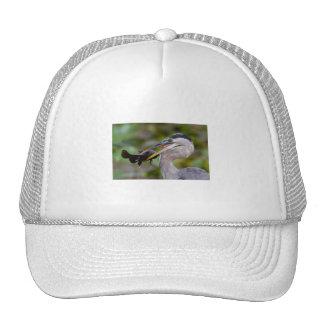 Blue Catfish Trucker Hat