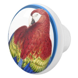 Blue Circles Scarlet Macaw Parrot Bird Animal Knob
