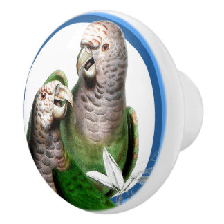 Blue Circles Two Parrot Birds Animal Knob
