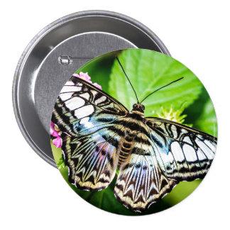 Blue Clipper Butterfly Button