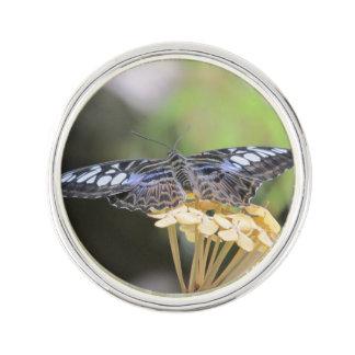 Blue Clipper Butterfly Lapel Pin