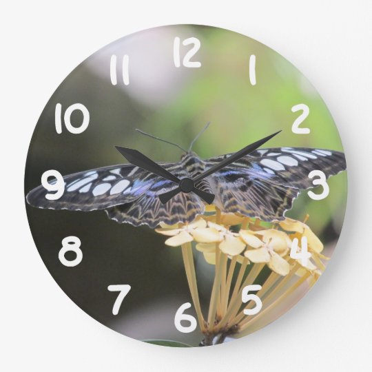 Blue Clipper Butterfly Wall Clock