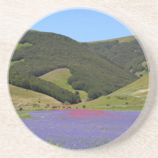 Blue colored fields with cornflowers beverage coaster