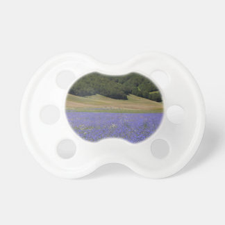Blue colored fields with cornflowers pacifier