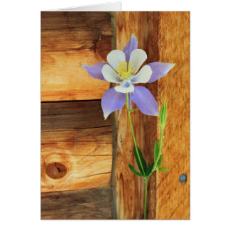 Blue Columbine and Wood All Occasion Card